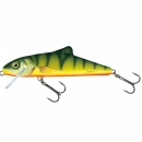 Salmo Skinner 15 cm floating HP