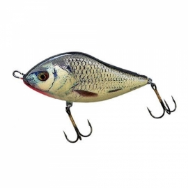 Salmo Slider 10 cm Floater RGS